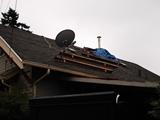 Portland Contractor